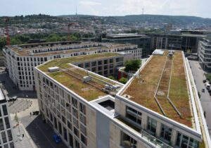 Multiple benefits of green roofs recognised in EU climate adaptation strategy