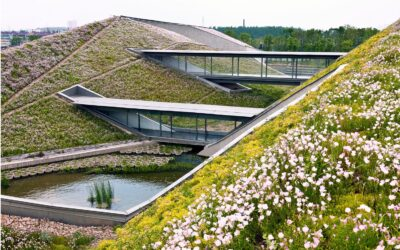 Key Definition: Green Roof