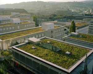 European Parliament highlights green roofs for climate change adaptation
