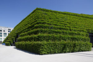 Green island in the city with building greening