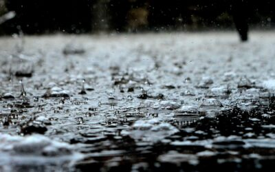 In the press | Rainwater as a resource in the city