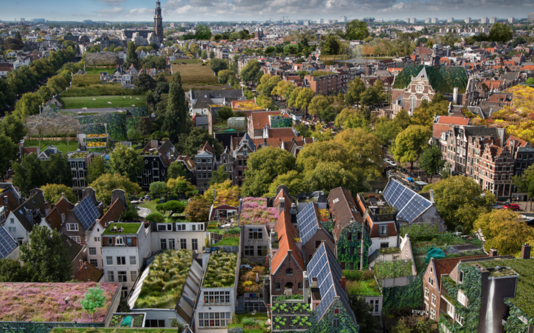 Renaturing our cities for climate action and citizens' wellbeing – Open letter to the EU Commission